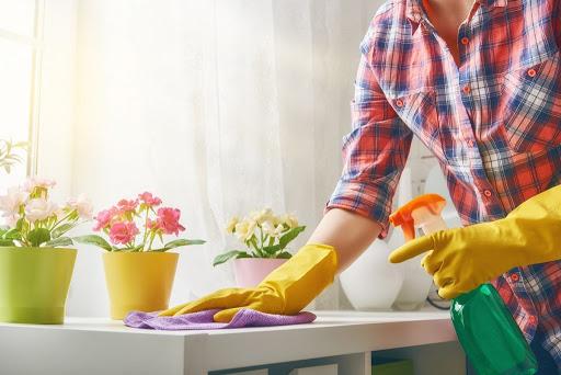 Echipamente profesionale de dezinfectat